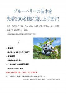 H29ブルーベリー苗配布チラシ-2